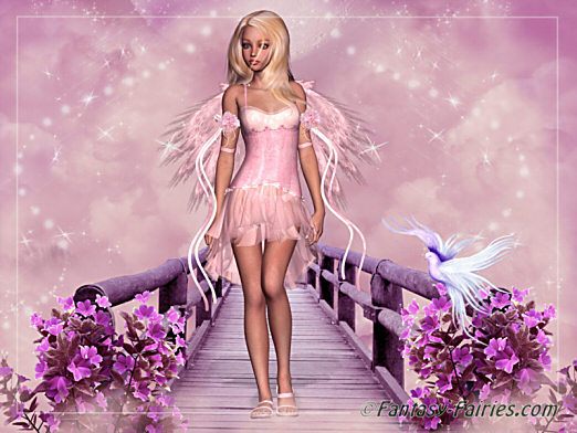 pink fairy