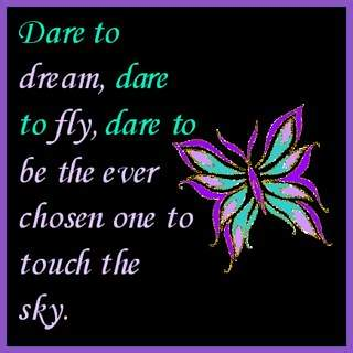 dare to dream dare to fly touch the sky