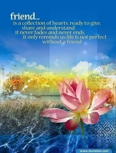friend is a collection of hearts