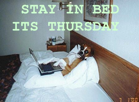 stay in bed it's thursday