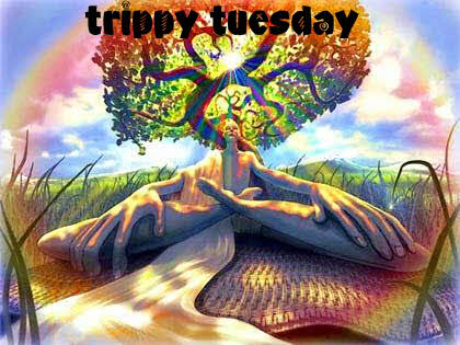 trippy tuesday
