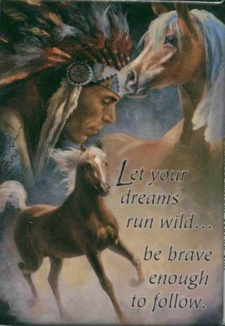 let your dreams run wild be brave enough to follow