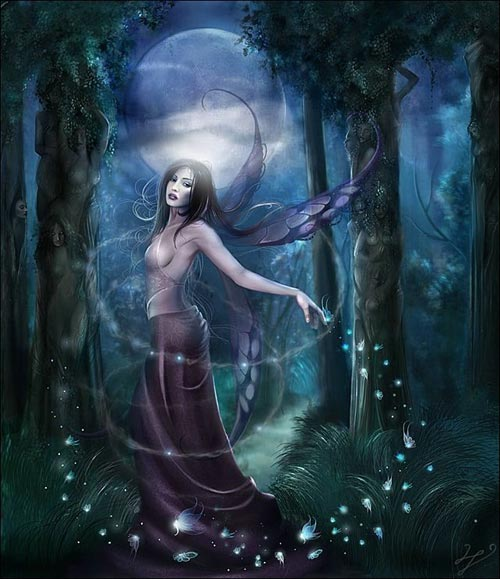 forest fairy at night
