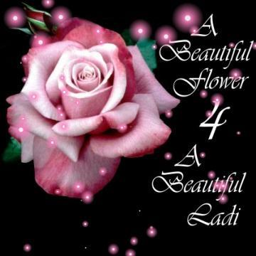 a beautiful flower for a beautiful lady