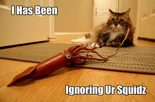 i have been ignoring your squids