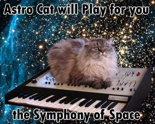 astro cat will play for you the symphony of space