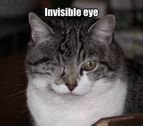 invisible eye