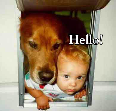 hello dog and baby