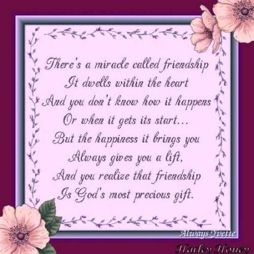 a miracle called friendship