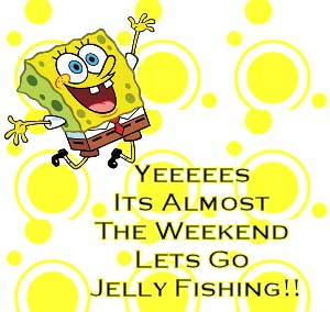 sponge bob it's almost the weekend lets go jelly fishing
