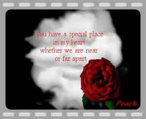 You have a special place in my heart whether we are near or far apart