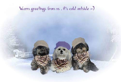 warm greetings