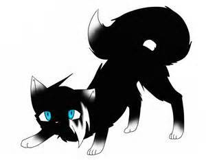 Warrior Cat Black