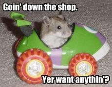 mouse driving car