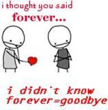 i thought you said forever i didn't know forever was goodbye