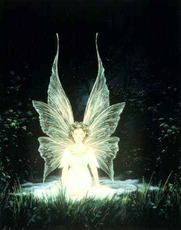 glowing fairy