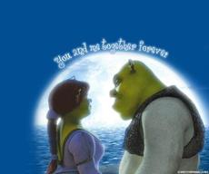 you and me together forever shrek