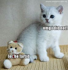 lol he farted omg i did not