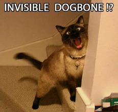 invisible dogbone