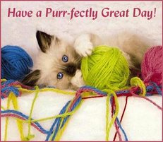 have a perfectly great day purrfectly