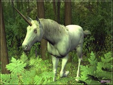 unicorn in the wood