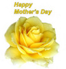 Search mothers day